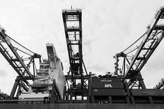 Hamburger Hafen (flo.niegel) Tags: hamburg hafen harbour schwarzweis schiff container terminal seefahrt warenverkehr warenfluss port nikon elbe