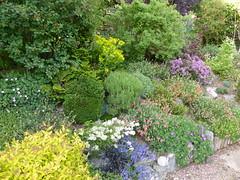 P1190489 (jrcollman) Tags: helianthemum collepardo gardens places plants iplant geranium veronicaprostrata euphorbia pplant eplant gplant hplant perennialcandytuft hebe iberissempervirensevergreencandytuft