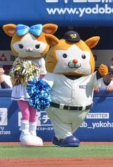 DSC_0411 (Kao.O) Tags: baystars 横浜denaベイスターズ 横浜スタジアム ハマスタ プロ野球 オープン戦 2019