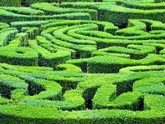 Like a maze. (Ia Löfquist) Tags: rome rom roma italy italien italia maj may
