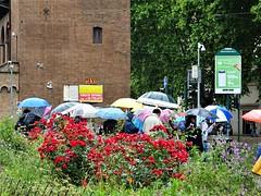 A rainy day. (Ia Löfquist) Tags: rome rom roma italy italien italia maj may