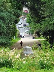 Leaving the city noises behind. (Ia Löfquist) Tags: rome rom roma italy italien italia maj may