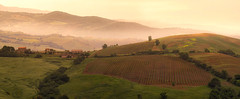 before the sun rises (Robert Stärz) Tags: tuscany toscana italia italy valdorcia pienzasanquiricodorcia campagna countryside green verde colline hills europe sunrise sunset beautiful twilight scenery field felder maremma siena