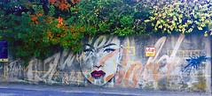 All The Glitters by Rone (wiredforlego) Tags: graffiti mural streetart urbanart publicart aerosolart newzealand nz queenstown rone