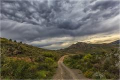 Un paseo por el campo (Fernando Forniés Gracia) Tags: españa aragón zaragoza flores nubes camino paisaje landscape naturaleza