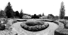 Belfield house walled garden ~ HBM (Wendy:) Tags: pano belfield walled garden benches seats paving hedges hbm