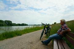 Bike to Work (Lutz Blohm) Tags: biketowork bike2work scottsilence20 arbeitsweg sonyfe24105mmf4goss fluskilometer402 rhein rheinufer rheindamm sonyalpha7aiii