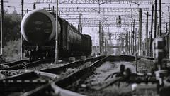 X-T2 2019-05-30 131 (linebrell) Tags: zm5sa500mmf8 зм5са lensturboii railways monochrome reflex mirror