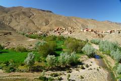RU_201904_Maroc_182_x (boleroplus) Tags: gorgesdadés horizontal montagnes palmier paysage boumalnedades maroc