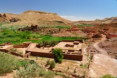 RU_201904_Maroc_163_x (boleroplus) Tags: gorgesdadés horizontal montagnes palmier paysage boumalnedades maroc