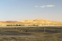 RU_201904_Maroc_258_x (boleroplus) Tags: desert horizontal montagnes palmier paysage merzouga maroc