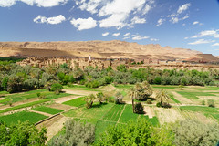 RU_201904_Maroc_257_x (boleroplus) Tags: gorgesdutodra horizontal montagnes palmier paysage tinghir maroc