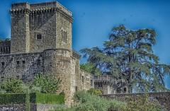 Palacio-Castillo Condes de Oropesa (pedroramfra91) Tags: palacio palace castillo castle exteriores outdoors árbol tree