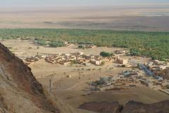 RU_201904_Maroc_365_x (boleroplus) Tags: desert horizontal jbelzagora montagnes palmier paysage randonnee zagora maroc