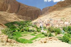 RU_201904_Maroc_254_x (boleroplus) Tags: gorgesdutodra horizontal montagnes palmier paysage randonnee tinghir maroc