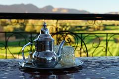 RU_201904_Maroc_221_x (boleroplus) Tags: horizontal montagnes palmier paysage riadalanwar tinghir maroc