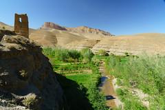RU_201904_Maroc_186_x (boleroplus) Tags: gorgesdadés horizontal montagnes palmier paysage boumalnedades maroc