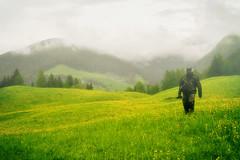 Spring Time in Dolomites (Salmoopen) Tags: dolomite italy misurina braies garda alpedisiusi ranui valdifunes