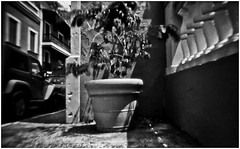 Fotografía Estenopeica (Pinhole Photography) (Black and White Fine Art) Tags: fotografiaestenopeica pinholephotography lenslesscamera lenslessphotography fotografiasinlente pinhole estenopo estenopeica stenopeika sténopé aristaedu100fomapan kodakd76 sanjuan oldsanjuan viejosanjuan puertorico bn bw
