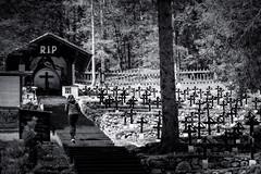 RIP... (Salmoopen) Tags: dolomite italy misurina braies garda alpedisiusi ranui valdifunes
