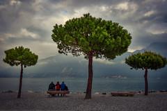 Three Friends (Salmoopen) Tags: dolomite italy misurina braies garda alpedisiusi ranui valdifunes
