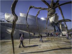 Giant Spider Sculpture at the Guggenheim Museum (Luc V. de Zeeuw) Tags: art bilbao guggenheim modern modernart museum sculpture spider basquecountry spain