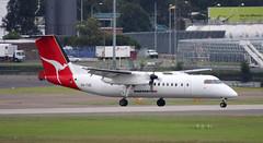 DHC-8 | VH-TQE | SYD | 20071227 (Wally.H) Tags: bombardier dehavillandcanada dhc8 dash8 vhtqe qantaslink easternaustraliaairlines syd yssy sydney kingsfordsmith airport
