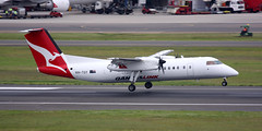 DHC-8 | VH-TQY | SYD | 20071227 (Wally.H) Tags: bombardier dehavillandcanada dhc8 dash8 vhtqy qantaslink easternaustraliaairlines syd yssy sydney kingsfordsmith airport