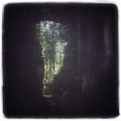 Eine grüne Welt (plastiCtroglodyte) Tags: snapseed franken ausgang wandern herbst höhle kontur streitberg fairphone grün licht dunkel wiesenttal fränkischeschweiz outline black green light world continent franconia germany cave exit