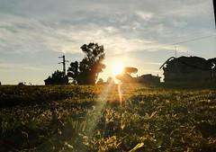 La speranza è come il sole, che, mentre ci avviamo verso di esso, proietta dietro di noi l'ombra del nostro fardello. (Nabel Grant) Tags: