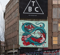 STREET ART AT RANDOM IN BELFAST [25 March 2019]-152848 (infomatique) Tags: red streetart belfast 25march streetsofbelfast ihadabadfall sony a7riii streetphotography urbanexpression urbanculture williammurphy infomatique fotonique ireland northernireland uk art culture