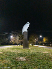 The Owl Statue on Friday morning (garydlum) Tags: owlstatue publicart canberra australiancapitalterritory australia