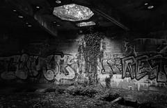 Bunker-Ruine Fernmeldeanlage Groß Hollwedel (WW2) (SurfacePics) Tags: blackwhite blackandwhite bw sw monochrome schwarzweis einfarbig harpstedt bassum landkreisdiepholz niedersachsen lowersaxony deutschland germany drittesreich 3rdreich nazigermany europe europa reichspost sender fernmeldeanlage bunker shelter ww2 worldwar2 zweiterweltkrieg abandoned decay lostplace lostworld forgotten ruine ruins technik relikte relict beton sonyalpha77ii sonyalpha urbex urbanexploring urbexpeople surfacepics mai 2019 historical historisch history geschichte bauruine photo foto exploration lost nordwesten norddeutschland wald