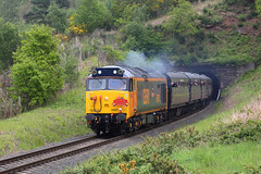 Hercules (Treflyn) Tags: hoover class 50 50007 hercules recently painted gbrf livery emerges from foley park tunnel kidderminster bridgnorth train 2019 spring diesel festival gala
