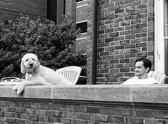 GRIII (daveson47) Tags: people dog candid mono monochrome bw blackandwhite street streetphotography urban city minneapolis ricoh ricohgriii griii pet