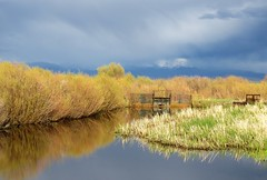 Storms All Around (Patricia Henschen) Tags: southriverroad irrigation gate clouds storm mountain mountains wetland canal goldenhour alamosa colorado rural backroad reflection sangredecristo