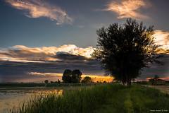 I tramonti più belli hanno bisogno di cieli nuvolosi - The most beautiful sunsets need cloudy skies. (alfapegaso) Tags:
