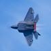 F-22A Raptor, s:n 04-4069,DSC_0344