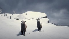 Red Dead Redemption 2_20190105192955 (Cagey898) Tags: animals red dead redemption 2 video game videogame snow sky