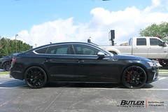 Audi S5 with 21in Vossen VFS1 Wheels and Michelin Pilot Super Sport Tires (Butler Tires and Wheels) Tags: audis5withvossenvfs1wheels audis5with22invossenvfs1wheels audis5with22invossenvfs1rims cars car wheels tires vehicles vehicle audi rims s5 vossen audis5 vossenwheels butlertire vossenrims butlertiresandwheels 22inrims 22inwheels audiwith22inwheels audiwith22inrims audiwithwheels audiwithrims audis5withrims audis5withwheels s5withwheels s5withrims 22invossenwheels 22invossenrims vossenvfs1 22invossenvfs1wheels 22invossenvfs1rims vossenvfs1wheels vossenvfs1rims audiwith22invossenvfs1wheels audiwith22invossenvfs1rims audiwithvossenvfs1wheels audiwithvossenvfs1rims audis5withvossenvfs1rims s5withvossenvfs1wheels s5withvossenvfs1rims audis5with22inwheels audis5with22inrims s5with22inwheels s5with22inrims s5with22invossenvfs1wheels s5with22invossenvfs1rims