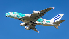 "A380 - ANA ""Kai"" (rDLE_) Tags: a380 beluga airbus avion plane aircraft toulouse airport spotter"