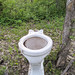 Toilet Dumped in the Park 03