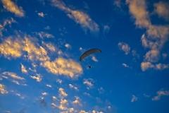 Paraglider (mcvmjr1971) Tags: brasil litoral f20 lenssigma d800e art2435mm sunset pordosol sea riodejaneiro nikon offshore niterói paraíso mmoraes regiaooceanica sky azul clouds céu vermelho nuvens paraglider