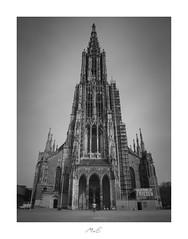 Ulmer Münster (Max Angelsburger) Tags: germany deutschland europe steeple april ulm badenwürttemberg 2019 badenwuerttemberg chathedral ulmermünster traveladdicttraveltheworldlovetotravellonelyplanetjustgoshootworlderlustgetoutstayoutvacationgoalstakemetheretakemetherenowsolotraveltraveldudesseemycitybeautifuldestinationscitybestviews