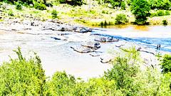 Pedernales_009 (allen ramlow) Tags: pedernales state park texas overexposed overexposure landscape