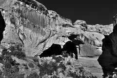 The Hickman Bridge (Black & White, Capitol Reef National Park) (thor_mark ) Tags: azimuth305 blackwhite blueskies capitolreefnationalpark capturenx2edited centralutahplateaus colorefexpro coloradoplateau day3 desertlandscape desertmountainlandscape desertplantlife fishlakeplateau hdr hickmanbridge hickmanbridgetrail highdesert incamerahdr intermountainwest landscape layersofrock lookingnw monocline naturalbridge nature nikond800e outside portfolio project365 singleimagehdr sunny trees utahhighdesert utahnationalparks2017 waterpocketfold waynewonderland ut unitedstates