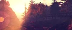 I feel you tracing my scars (Ghoulina Waffle) Tags: sl sltravel sloutdoors slexploration sldestinations slwoods slphotography digitalart photographicmanipulation virtualworlds travel tourism adventure sltourism sltourist secondlife canyoncreek