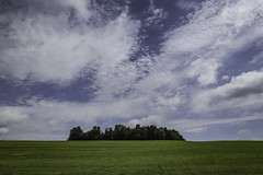 The Trees and the Field under the Hot Summer Sky (jessicalowell20) Tags: agriculture blue cayugacounty clouds farming field green hot newyorkstate northamerica northeast rural sky summer summertrees white