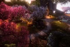 eso64-2019-03-25-03-53-25-99 (Elleylie) Tags: eso tes elderscrolls videogame screenshot aldmeridominion summerset altmer landscape