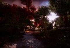 eso64-2019-03-25-03-59-40-35 (Elleylie) Tags: eso tes elderscrolls videogame screenshot aldmeridominion summerset altmer landscape